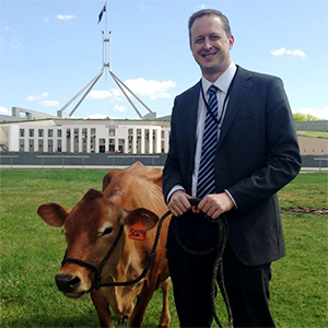 Ben Stapley with cow in from of Parliament House
